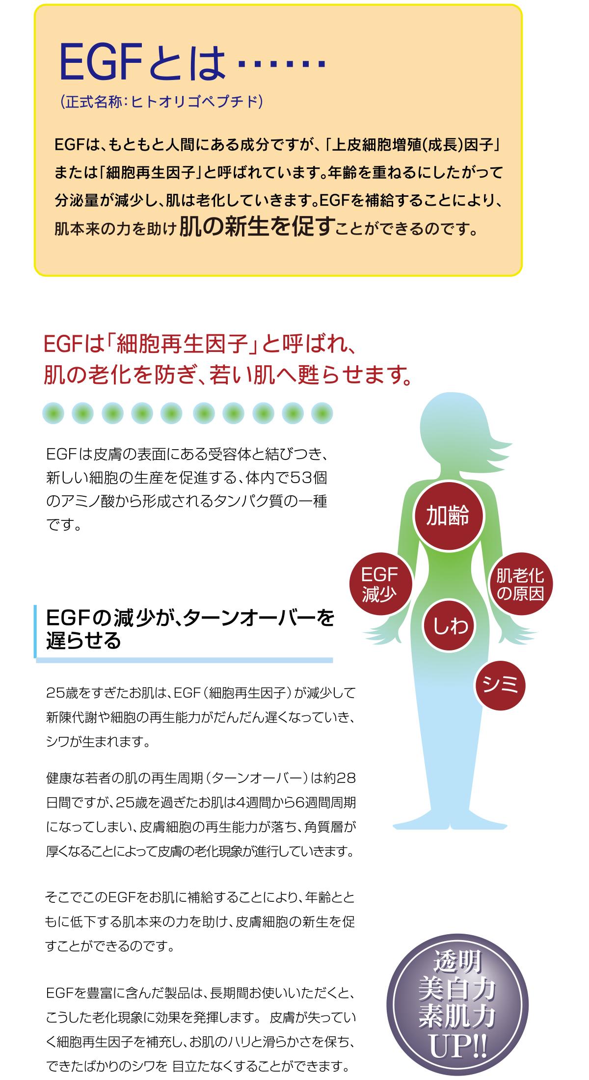 'VIASO EGF…−†[…tŁ†Š'C10/17.pdf